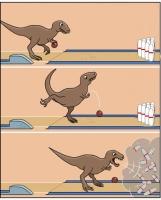 rex.jpg